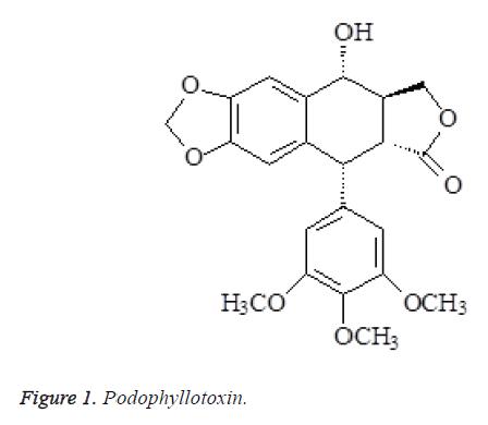 biomedres-Podophyllotoxin