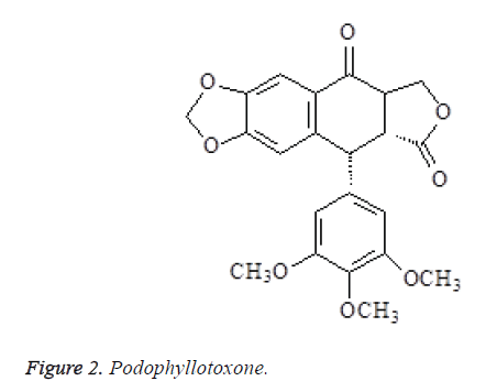 biomedres-Podophyllotoxone