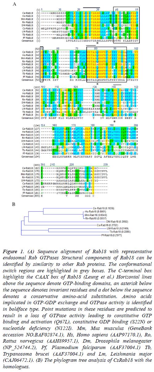 biomedres-Point-mutations