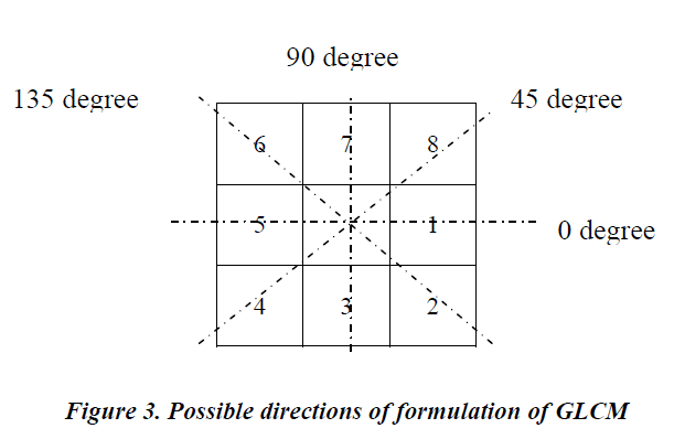 biomedres-Possible-directions