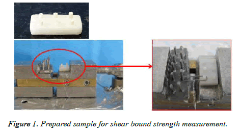biomedres-Prepared-sample
