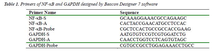biomedres-Primers-GAPDH-Beacon-Designer