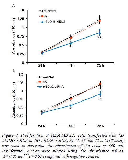 biomedres-Proliferation-curves