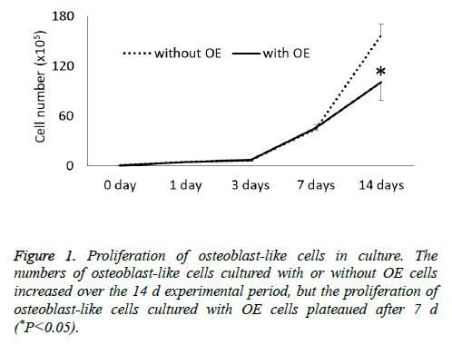 biomedres-Proliferation-osteoblast