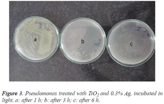 biomedres-Pseudomonas-treated-TiO2