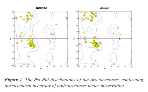 biomedres-Psi-Phi-distributions