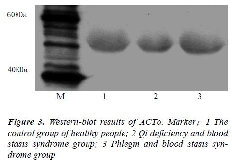 biomedres-Qi-deficiency-blood