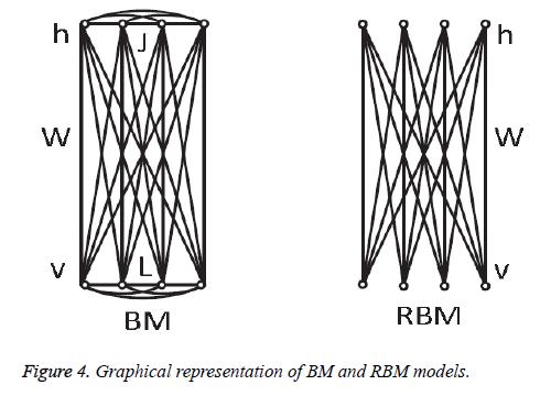biomedres-RBM-models