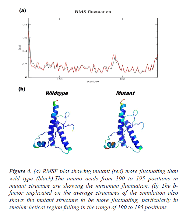 biomedres-RMSF-plot
