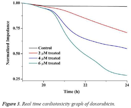 biomedres-Real-time-cardiotoxicity