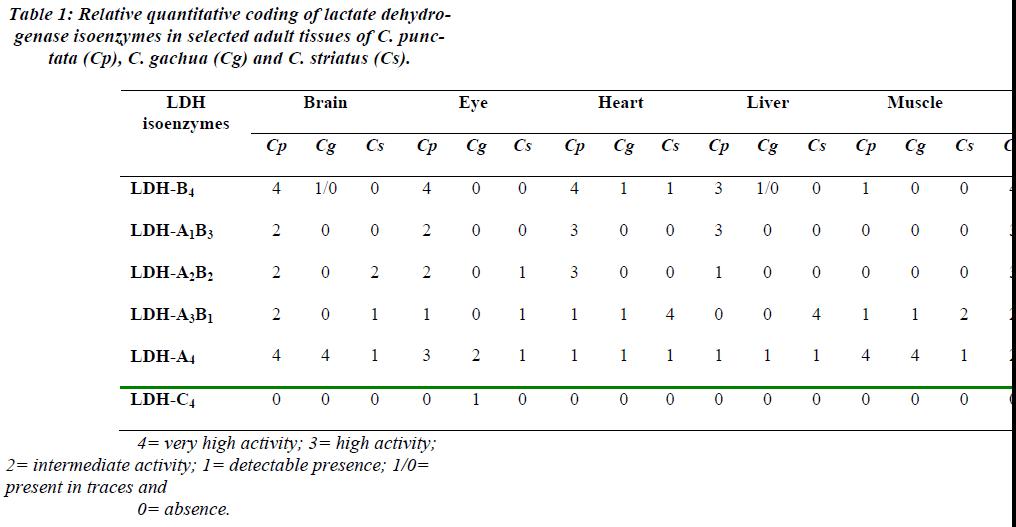 biomedres-Relative-quantitative