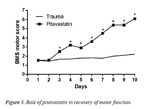 biomedres-Role-pitavastatin