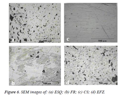 biomedres-SEM-images