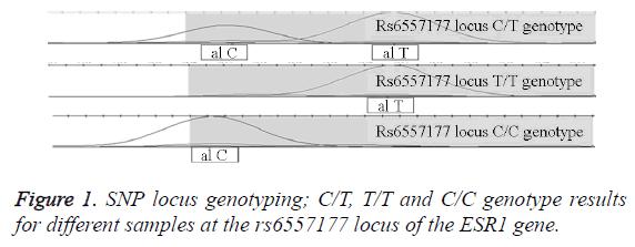 biomedres-SNP-locus-genotyping