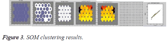 biomedres-SOM-clustering-results
