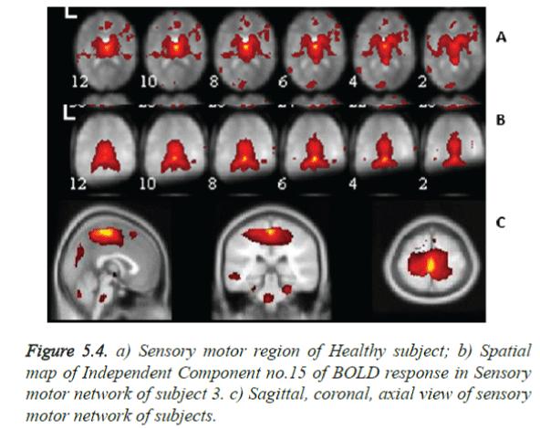 biomedres-Sagittal-coronal-axial-view