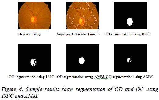 biomedres-Sample-results-segmentation