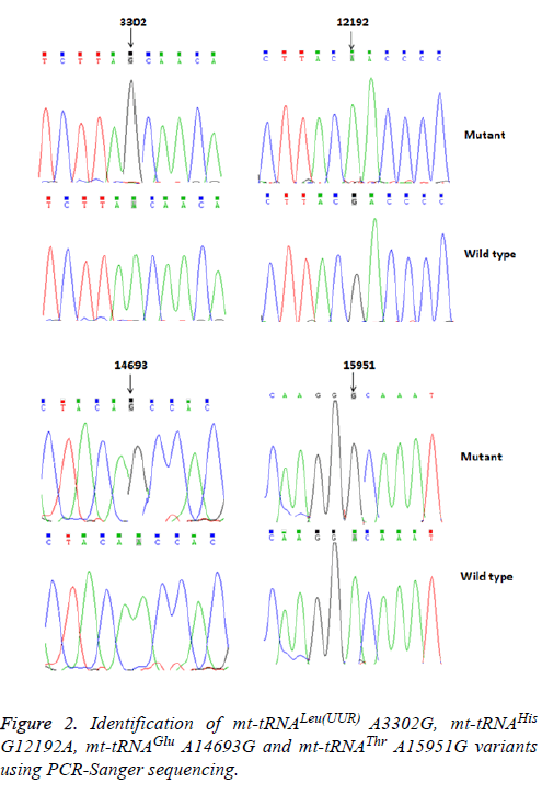biomedres-Sanger-sequencing