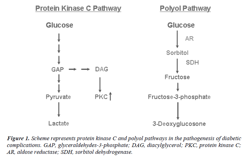 biomedres-Scheme-represents-protein-kinase