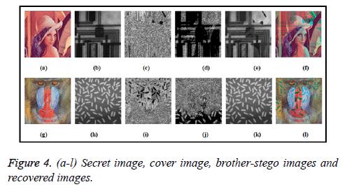biomedres-Secret-image