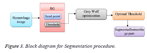 biomedres-Segmentation-procedure