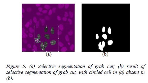 biomedres-Selective-segmentation