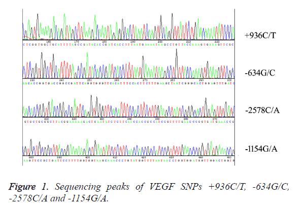 biomedres-Sequencing-peaks