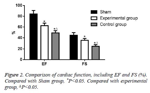 biomedres-Sham-group