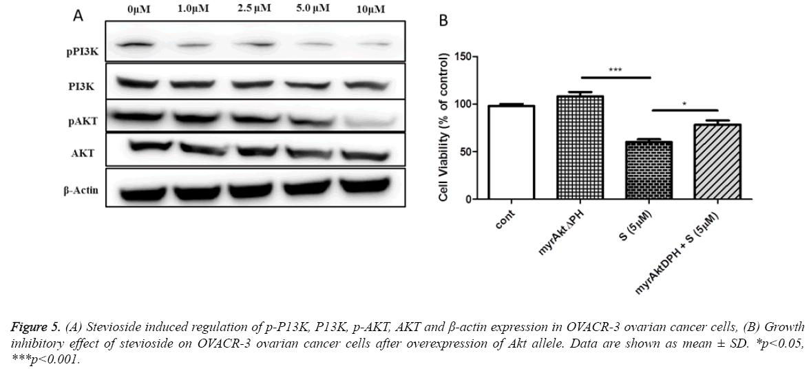 biomedres-Stevioside-induced-regulation