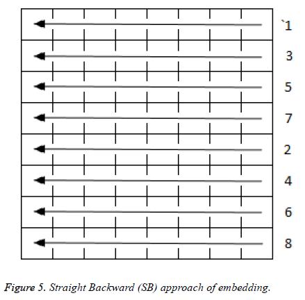biomedres-Straight-Backward