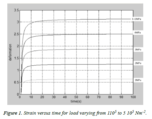 biomedres-Strain-load