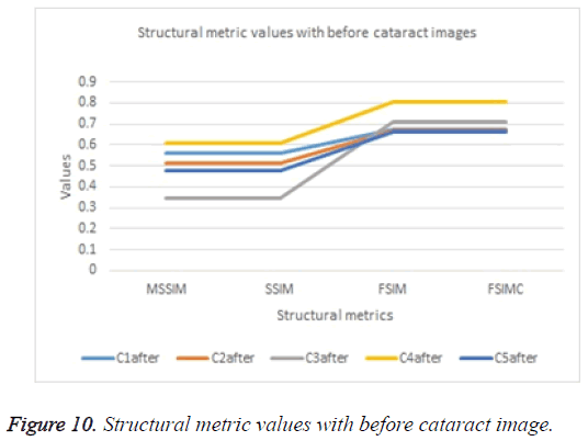 biomedres-Structural-metric-values