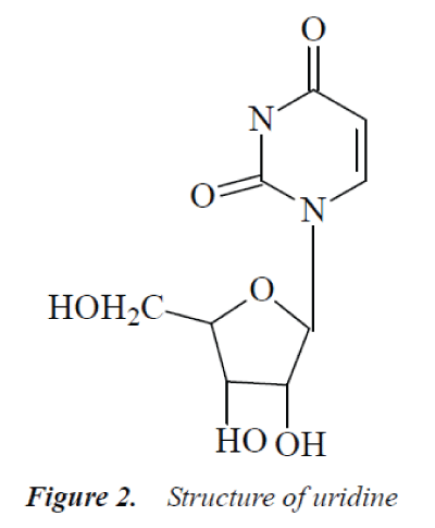 biomedres-Structure-uridine