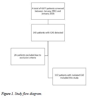 biomedres-Study-flow-diagram