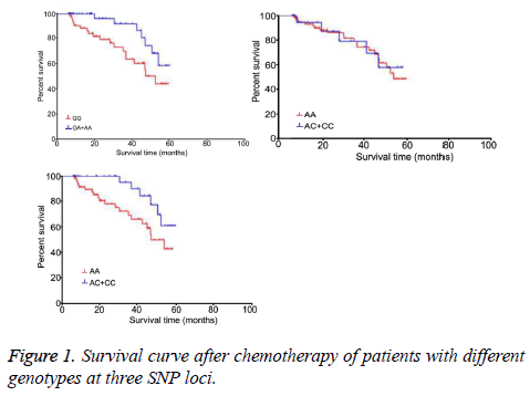 biomedres-Survival-curve