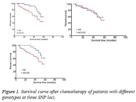 biomedres-Survival-curve