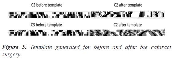 biomedres-Template-generated