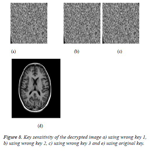 biomedres-Test-images