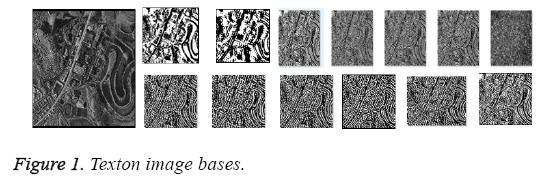 biomedres-Texton-image-bases