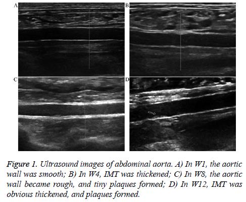 biomedres-Ultrasound-images