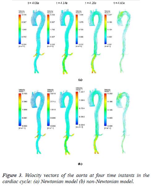 biomedres-Velocity-vectors
