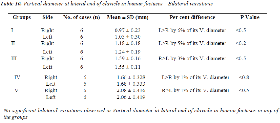 biomedres-Vertical-diameter-lateral-end