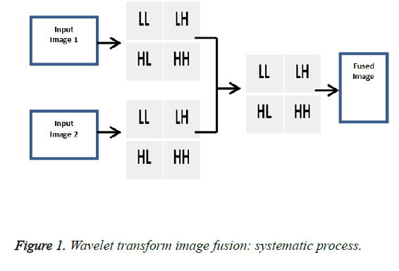biomedres-Wavelet-transform