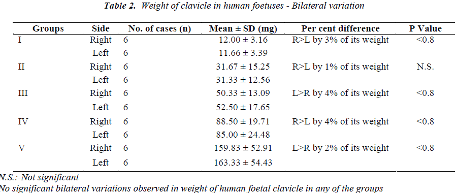 biomedres-Weight-clavicle-human