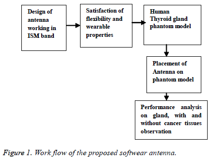 biomedres-Work-flow