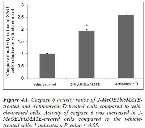 biomedres-activity-ratios