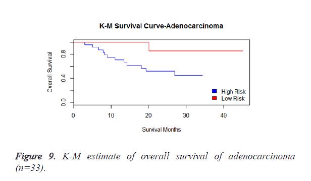 biomedres-adenocarcinoma