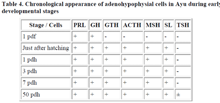 biomedres-adenohypophysial-cells-Ayu