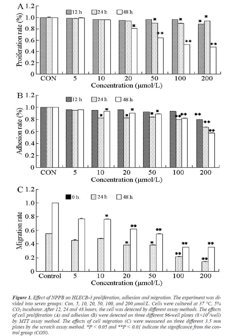 biomedres-adhesion-migration