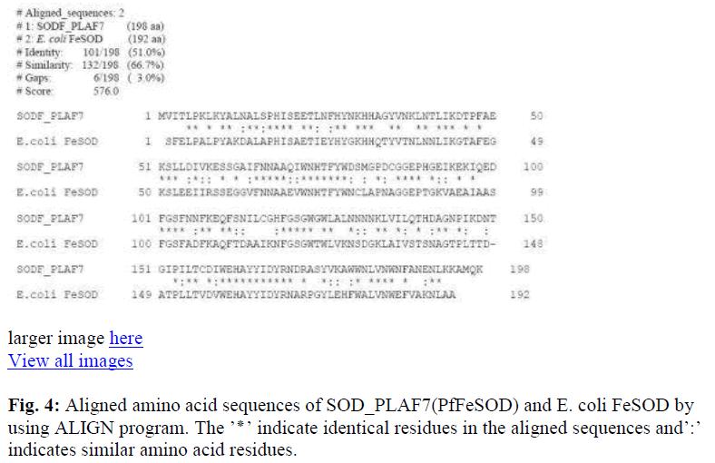 biomedres-amino-acid-cytosolic-sapiens-residues